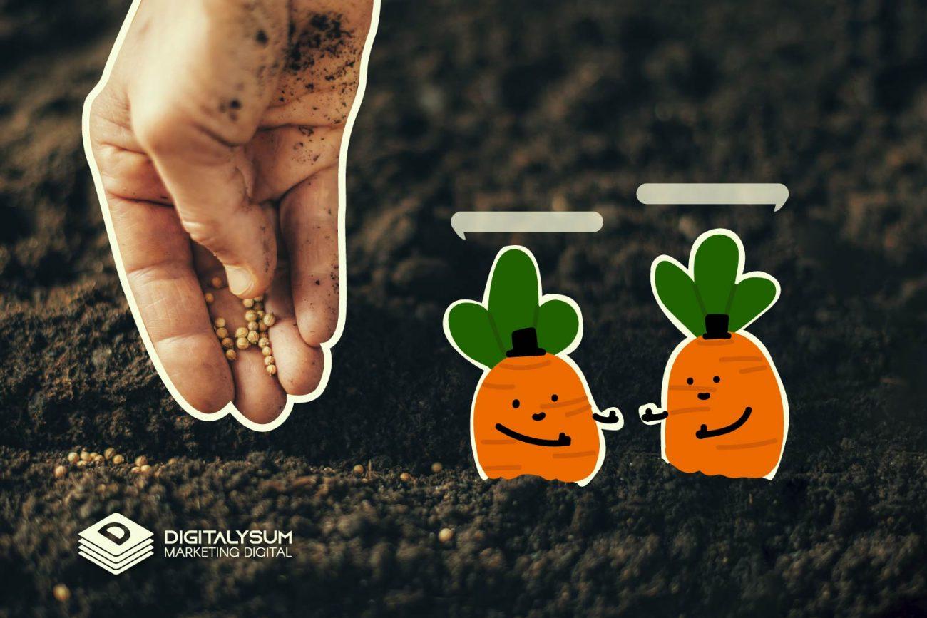 Lead nurturing: cultivando relaciones y lo que surja